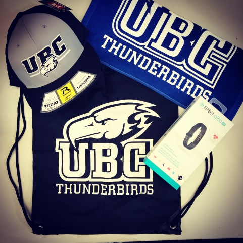 GET UBC ACTIVE theme package.JPG